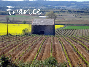JS-Photography-TN-France
